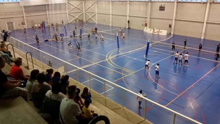 VII Trofeo Pablo Herrera, referencia en la pretemporada del voleibol español