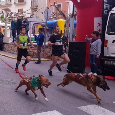 Victor Forner y Sandra Marín con sus canes, se llevan la II Lliga Canicrós Castelló